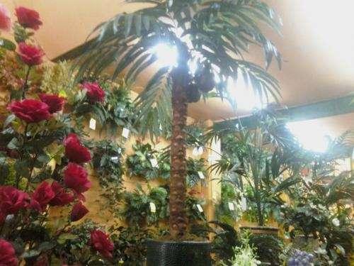 Decoracion y venta de plantas y arboles artificiales en Distrito