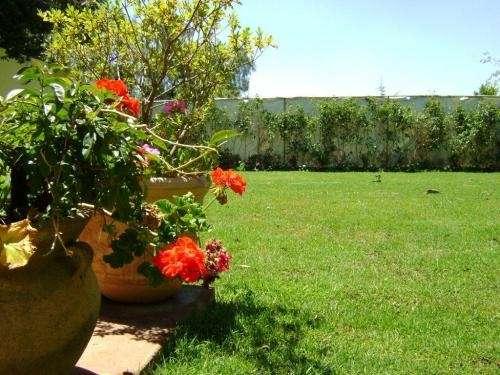 Rento jardin en san angel
