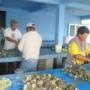 Terreno en compra, Calle MX$ 195 - VENDO TERRENO EN BARRA DEL TOR, Col. , , Tamaulipas