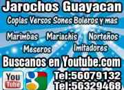 Grupo Jarocho en tlalpan - Mariachis Norteños Marimba