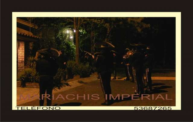 Mariachis en alvaro obregon