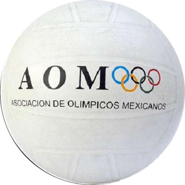 balon volibol economico publicitario!! en La Piedad - Artículos ... 5e8ab6310a7da