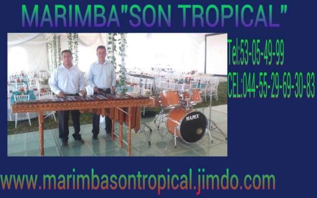 Marimba en coacalco. 55-29-69-30-83