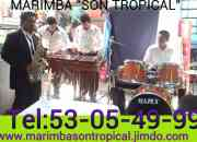 Marimba coacalco 53-05-49-99