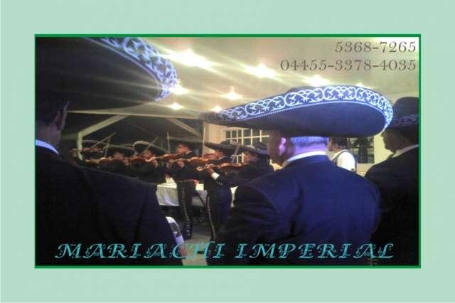 Mariachis en avante 53687265 numero de telefono 24 horas