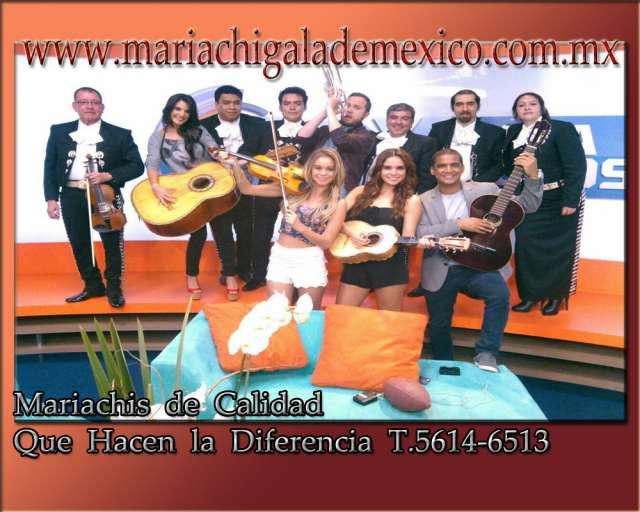 Mariachis por la noria disponibles t.56146513