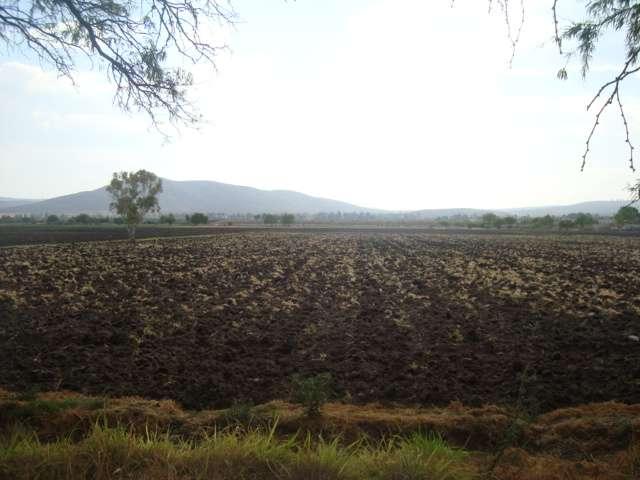 1.7 hectareas en venta en el colorado pegado al poblado con agua de pozo como socio