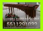 MARIMBA SERVICIOS ATIZAPAN 5511291032
