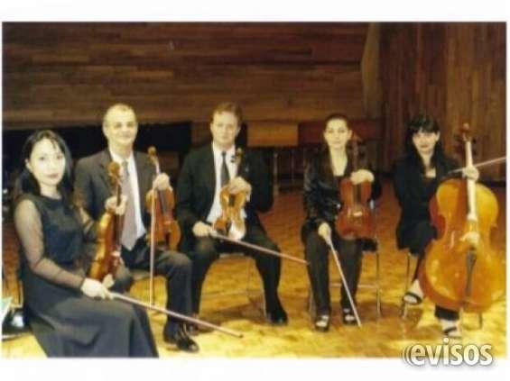 Violinistas profesionales / conciertos y más