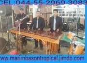 Marimba Contactanos al 5305-49-99
