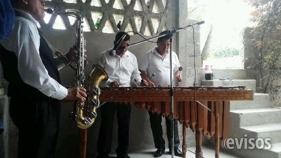 Fotos de Marimbas coacalco al 55-2969-3083 2