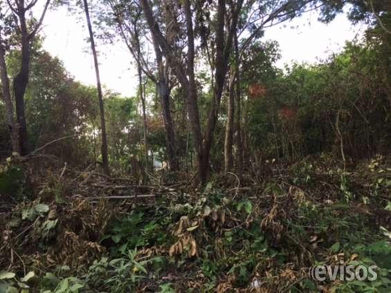 Terreno en venta en cancun, el pedregal