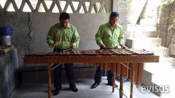 Marimba profesional aqui 53-05-49-99