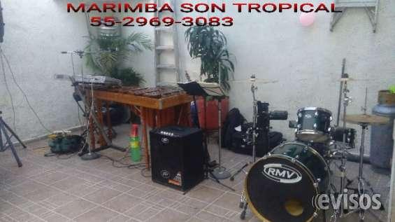 Marimba orquesta son tropical 5305-4999