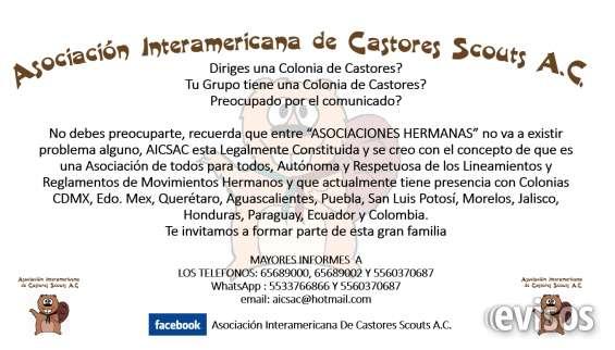 Asociacion interamericana de castores scouts a.c.