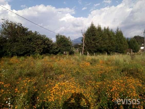 Terreno plano con vista a las montañas ideal para desarrollar