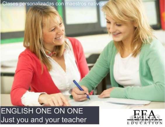 Clases de inglés y holandés. profesor nativo en df a domicilio