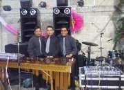 Marimba en Melchor Ocampo 5305-4999