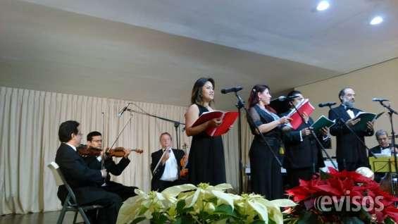 Cantanets de opera y ensamble conciertós y más