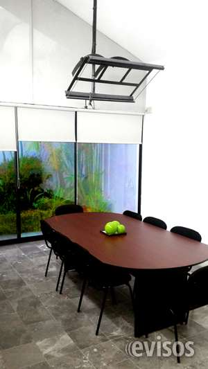 Oficinas virtuales para expandir tu negocio