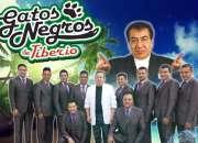 CONTRATACIONES Los Gatos Negros de Tiberio TEL 62.62.68.68
