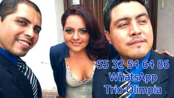 Trios musicales df y estado de mexico