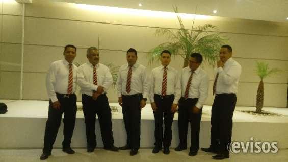 Marimba servicio en todo el df 5305-4999
