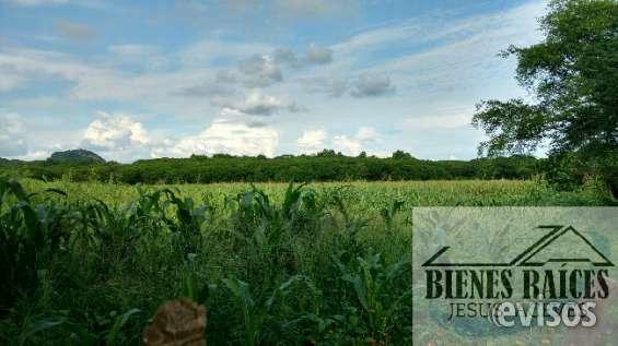 5 hectáreas a 7 km de culiacan