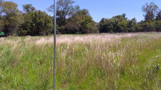 Terreno plano de 2 hectáreas a 25 minutos de valle de bravo