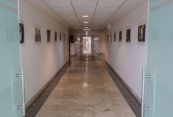 Amplias oficinas corporativas en renta. zona andares