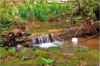 Hermoso terreno con río a unos minutos del centro de avándaro