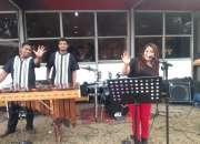 Marimba para todas sus fiestas 551129-1032