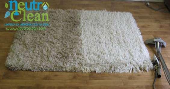 Lavado de tapetes persas, chinos, de diseño y finos a domicilio somos especialistas.