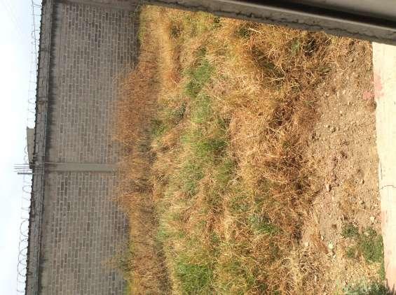 Terreno sin construcción