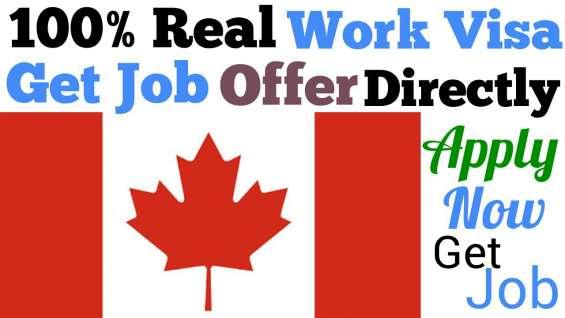 Viaja y trabaja en el extranjero en canadá con sandton peak hotel