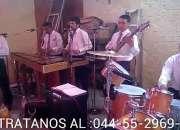 Marimba profesional 55-2969-3083
