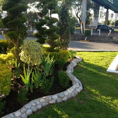 Servicio de jardinería