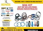 KIT DE SELLOS PARA GRUAS INDUSTRIALES-