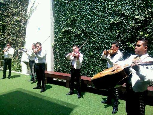 Mariachi musicos profesionales vip