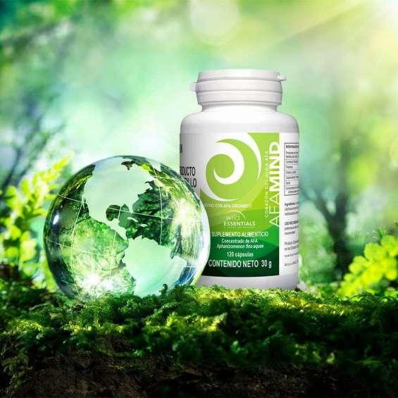 Afa mind, algas, algas organicas, liberadora de celulas madres