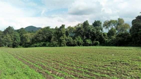 Terreno ideal para casa de campo con rio