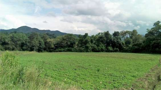 Terreno vista panoramica con pequeña loma