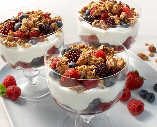 Fotos de Búlgaros de leche yogurt kéfir hongo scoby té kombucha y tíbicos de agua 1