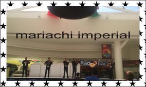 Mariachis en cumbres reforma