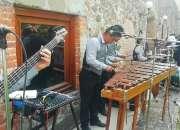 Marimba Tropical para fiesta 55-2969-3083