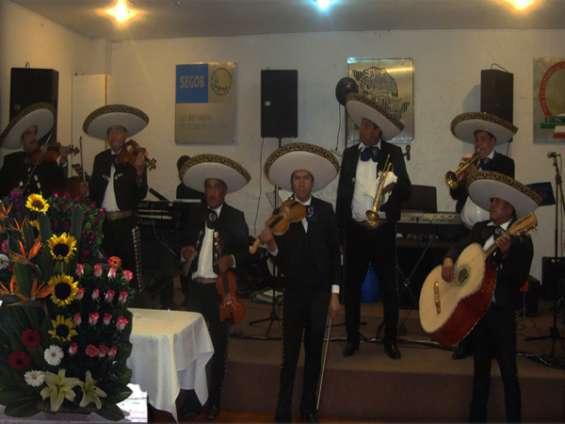 Gustavo a madero | mariachis | 5523696271