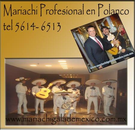 Servicioeconómico de mariachis 5527590196.