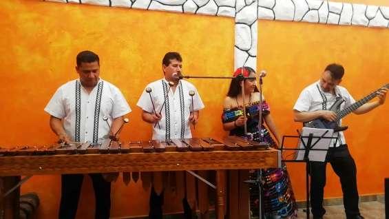 Marimba nicolás romero 55-2969-3083