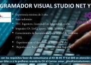Analista Programador Visual Studio Net y SSIS