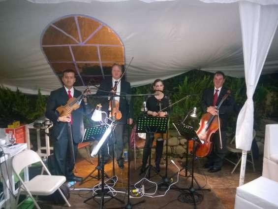 Cuarteto de cuerdas en ciudad de méxico